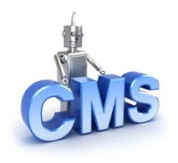 Content Management Initiative Implementation