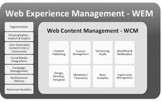 Optimize Web Experience Management